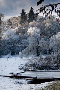 The millpool in winter (Fox lane Photography)