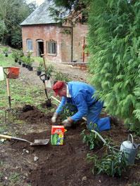 Derek plants a new hedge