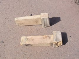 Wooden teeth from the main gear
